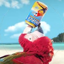 Tropico dans la boucle